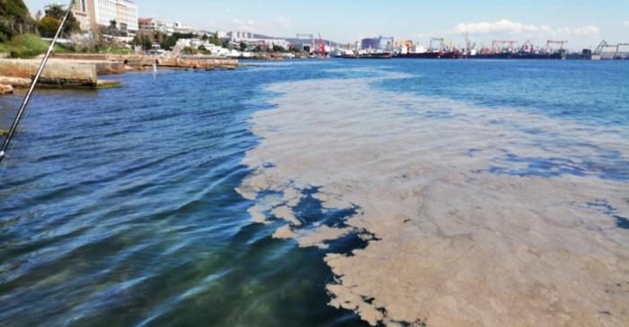 Deniz Salyası Nedir - Istanbul Da Deniz Salyalari Artiyor Deniz Salyasi Nedir Deniz Salyasinin ...